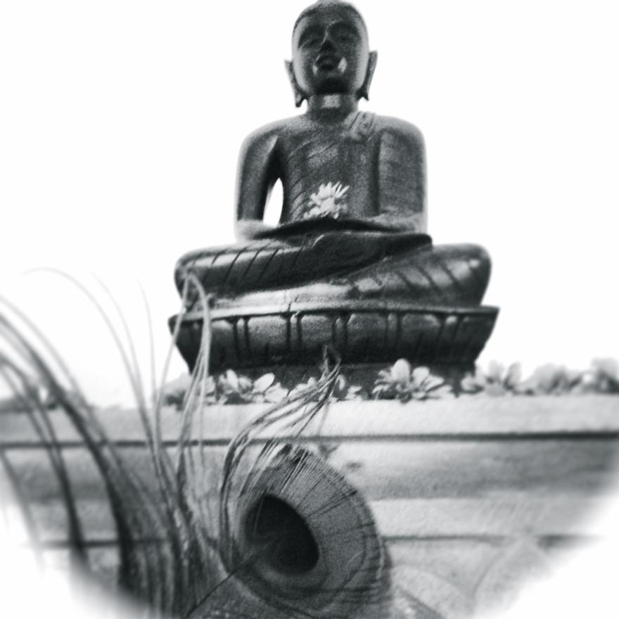 Buddhas Eye